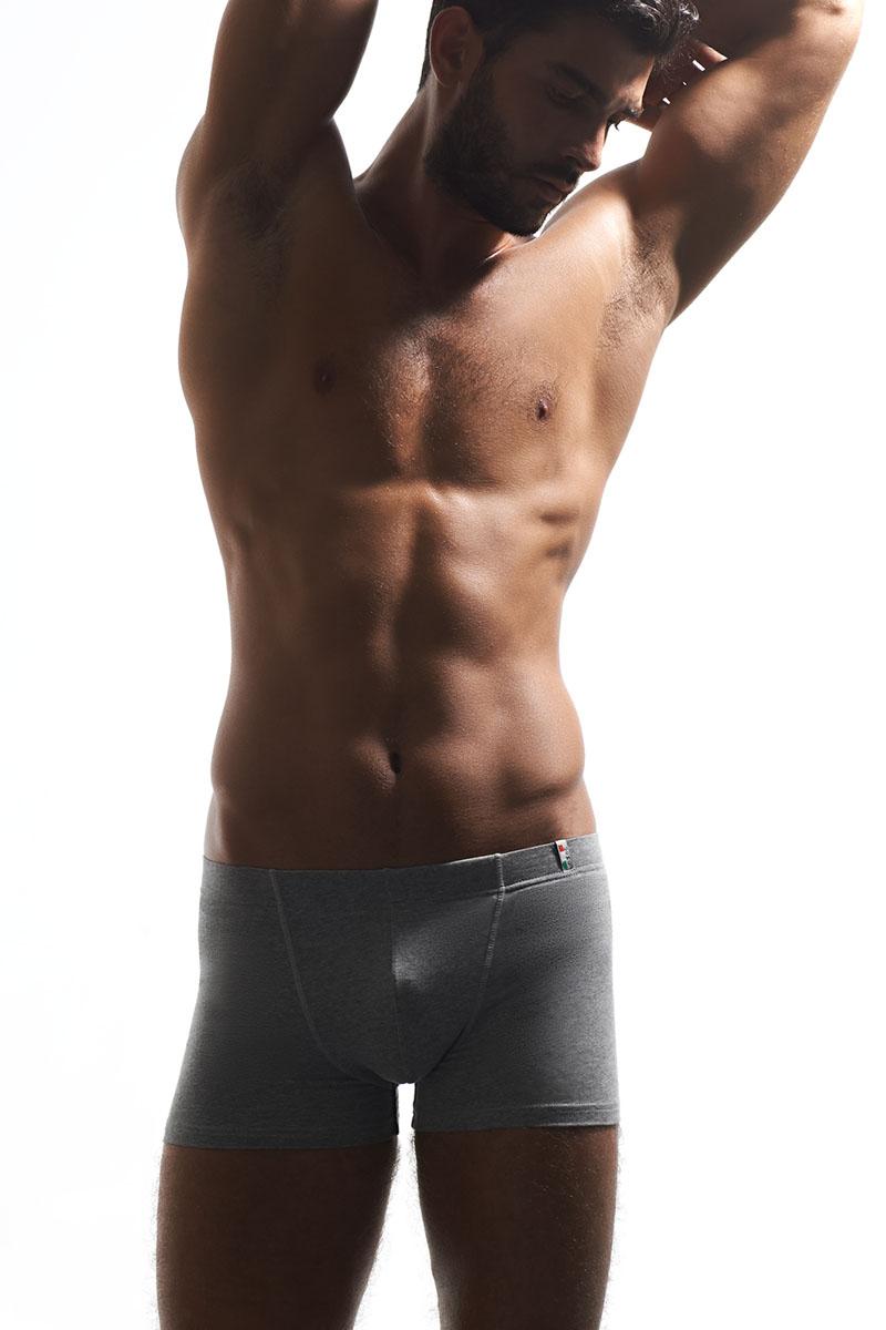 Трусы-боксеры мужские Griff, цвет: светло-серый. U01233. Размер L (48) [супермаркет] палладио jingdong мужское белье мужские трусы боксер [4] загружены моды печати хлопка мужское нижнее белье p034 смешивания xl 175 100