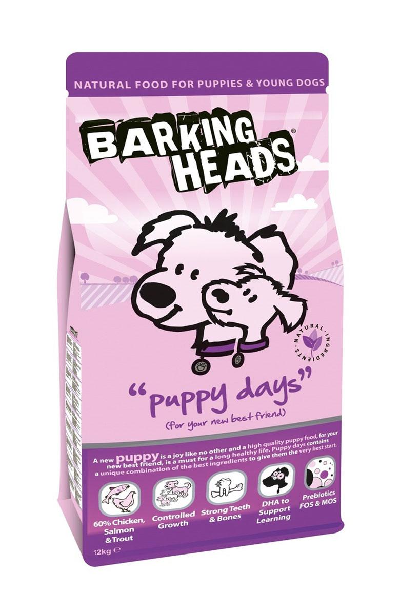 Корм сухой Barking Heads Puppy Days для щенков, с курицей, лососем и рисом, 12 кг18098Полноценный корм Barking Heads Puppy Days предназначен для щенков и молодых собак. Этот восхитительный корм для щенков призван помочь вашему любимцу расти с каждым днем. Щенки нуждаются в пище намного больше, чем взрослые собаки, а для нормального физического развития им требуется особая диета. Корм Puppy Days содержит уникальное сочетание тщательно отобранных ингредиентов, чтобы начальный этап жизни вашего щенка был наилучшим.Состав: свежеприготовленная курица 22%, сушеное куриное мясо 18%, коричневый рис, сладкий картофель, белый рис, свежеприготовленный лосось 8%, свежеприготовленная форель 5%, сухой яичный продукт, куриный жир, 3%, куриный бульон 2,5%, люцерна, лососевый жир 1,5%, морские водоросли, сушеный томат, сушеная морковь, пребиотик МОС (моно-олигосахариды), пребиотик ФОС (фруктоолигосахариды).Гарантированный анализ (%): белок 27%, содержание жира 17%, клетчатка 2,2%, зола 6,75%, влага 8%, кальций 1,2%, фосфор 1%, Омега-6 2,2%, Омега-3 1,3%, докозагексаеновая кислота 0,3%.Витамины (на кг): витамин А 25000 МЕ, витамин D3 2222 МЕ, витамин Е 694 МЕ.Комплекс микроэлементов (на кг): моногидрат сульфата железа 956 мг, моногидрат сульфата цинка 772 мг, моногидрат сульфата марганца 152 мг, пентагидрат сульфата меди 56 мг, безводный йодат кальция 6,80 мг, селенит натрия 0,77 мг.Товар сертифицирован.