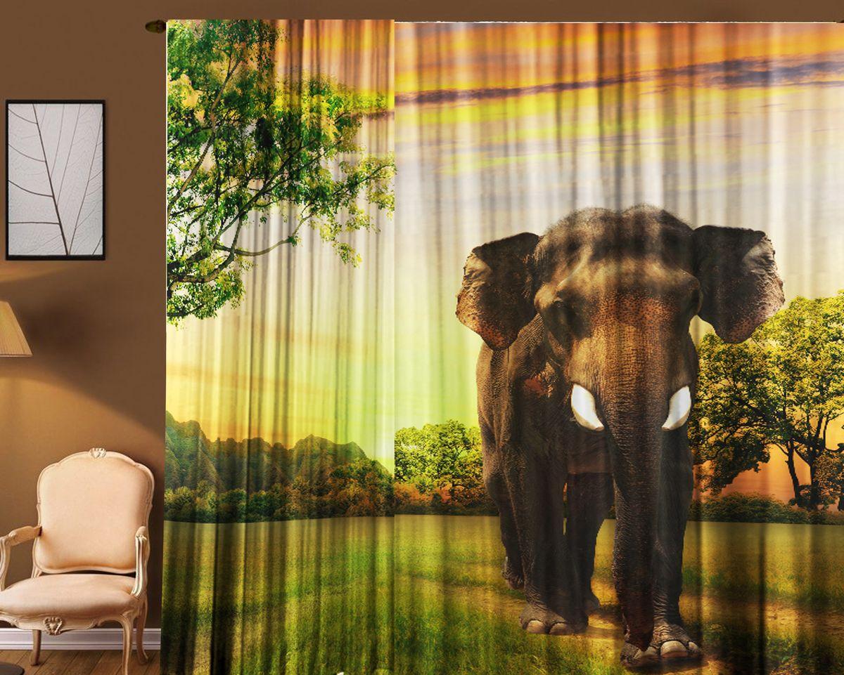 Комплект фототюлей Zlata Korunka Слон, на ленте, высота 270 см