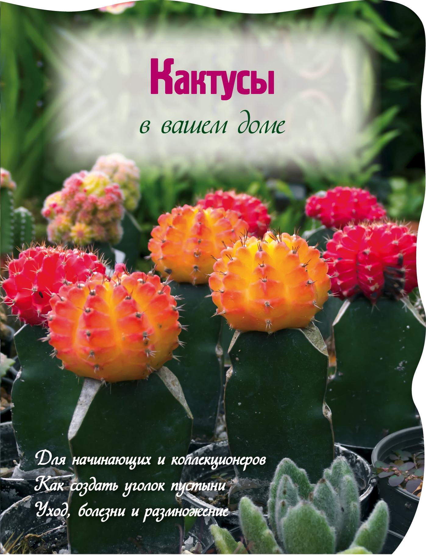 Волкова Е.А. Кактусы в вашем доме кактусы как разводить