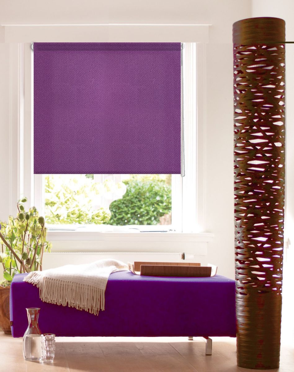 Штора рулонная Эскар Миниролло. Рояль, цвет: фиолетовый, ширина 68 см, высота 160 см304944068160Рулонными шторами Эскар Миниролло. Рояль можно оформлять окна как самостоятельно, так и использовать в комбинации с портьерами. Это поможет предотвратить выгорание дорогой ткани на солнце и соединит функционал рулонных с красотой навесных. Для изготовления рулонных штор используются ткани с различными рисунками и фактурой. Благодаря этому среди моделей рулонных штор для балконов и лоджий довольно большой выбор и вы всегда сможете подобрать для себя оптимальный вариант.Преимущества применения рулонных штор для пластиковых окон: - имеют прекрасный внешний вид: многообразие и фактурность материала изделия отлично смотрятся в любом интерьере;- многофункциональны: есть возможность подобрать шторы способные эффективно защитить комнату от солнца, при этом она не будет слишком темной. - Есть возможность осуществить быстрый монтаж.ВНИМАНИЕ! Размеры ширины изделия указаны по ширине ткани! Для выбора правильного размера необходимо учитывать - ткань должна закрывать оконное стекло на 3 см.