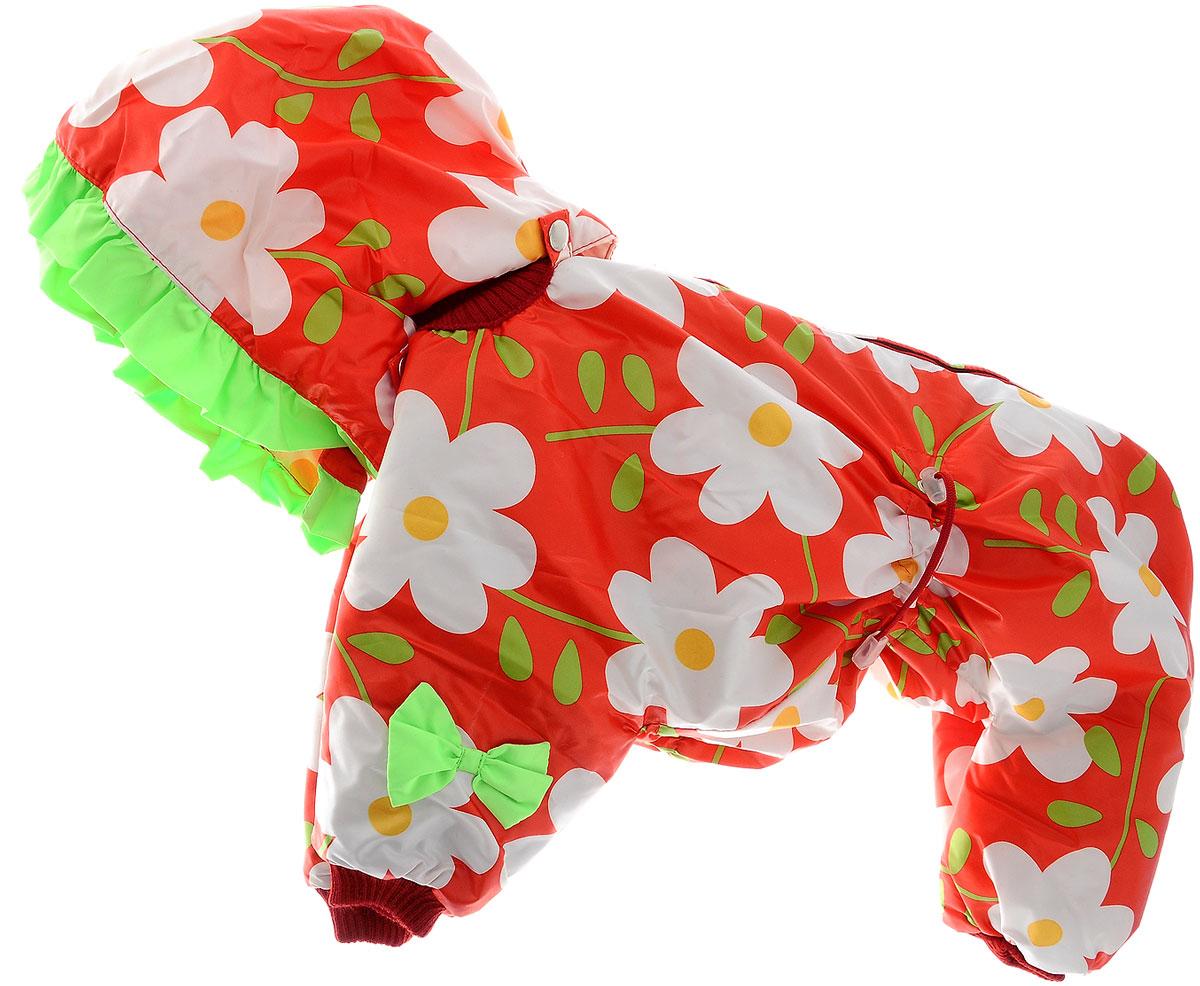 Комбинезон для собак Kuzer-Moda Мариска, утепленный, для девочки, цвет: белый, красный, салатовый. Размер XXLKZ003448Утепленный комбинезон для собак Kuzer-Moda Мариска, украшенный однотонными рюшами и забавными бантиками на передних лапках и капюшоне, отлично подойдет для прогулок в холодное время года.Комбинезон изготовлен из плащевки с утеплителем из синтепона, который сохранит тепло даже в сильные морозы. Комбинезон с капюшоном застегивается на кнопки и липучки, благодаря чему его легко надевать и снимать. Капюшон пристегивается при помощи кнопок. Низ рукавов и брючин оснащен трикотажными манжетами, которые мягко обхватывают лапки, не позволяя просачиваться холодному воздуху. На пояснице комбинезон затягивается на шнурок-кулиску.Благодаря такому комбинезону простуда не грозит вашему питомцу.Длина по спинке 36 см.Одежда для собак: нужна ли она и как её выбрать. Статья OZON Гид