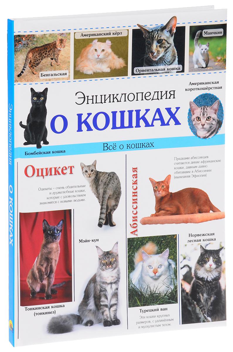 Ярослава Соколова Энциклопедия о кошках какой принтер для дома современный но не дорогой