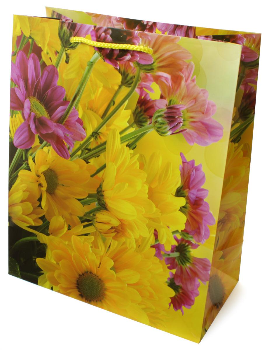 Пакет подарочный МегаМАГ Цветы, 26,4 х 32,7 х 13,6 см. 3117 L3117 LПодарочный пакет МегаМАГ, изготовленный из плотной ламинированной бумаги, станет незаменимым дополнением к выбранному подарку. Для удобной переноски на пакете имеются ручки-шнурки.Подарок, преподнесенный в оригинальной упаковке, всегда будет самым эффектным и запоминающимся. Окружите близких людей вниманием и заботой, вручив презент в нарядном, праздничном оформлении.