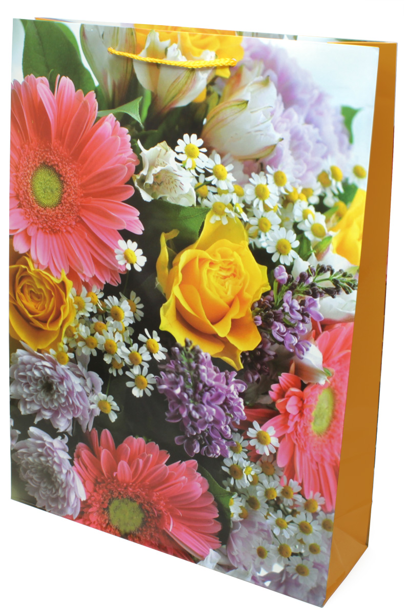 Пакет подарочный МегаМАГ Цветы, 32,4 х 44,5 х 10,2 см. 5041 XL5041 XLПодарочный пакет МегаМАГ, изготовленный из плотной ламинированной бумаги, станет незаменимым дополнением к выбранному подарку. Для удобной переноски на пакете имеются ручки-шнурки.Подарок, преподнесенный в оригинальной упаковке, всегда будет самым эффектным и запоминающимся. Окружите близких людей вниманием и заботой, вручив презент в нарядном, праздничном оформлении.