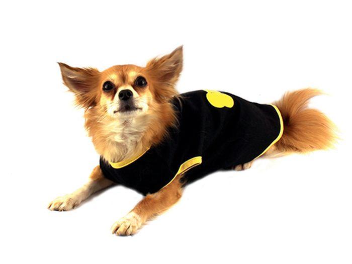 Майка для собак Каскад Lucky Dog, унисекс, цвет: черный, желтый. Размер M52000435Майка для собак Каскад выполнена из трикотажа. Майка без рукавов не ограничивает свободу движений, поэтому собачка будет чувствовать себя в ней комфортно.Модная и невероятно удобная трикотажная майка защитит вашего питомца от пыли и насекомых на улице, согреет дома или на даче. Длина по спинке: 25 см. Одежда для собак: нужна ли она и как её выбрать. Статья OZON Гид