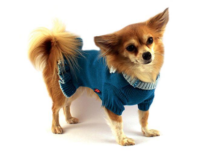 Платье для собак Каскад  Цветок , вязаное, цвет: бирюзовый. Размер M - Одежда, обувь, украшения