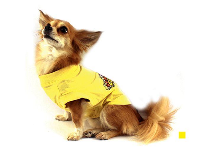 Футболка для собак Каскад Sexy Girl, для девочки, цвет: желтый. Размер XS52000559Футболка для собак Каскад выполнена из трикотажа. Футболка не ограничивает свободу движений, поэтому собачка будет чувствовать себя в ней комфортно. Спинка украшена ярким принтом. Модная и удобная трикотажная футболка защитит вашего питомца от пыли и насекомых на улице, согреет дома или на даче. Длина по спинке: 17 см. Одежда для собак: нужна ли она и как её выбрать. Статья OZON Гид