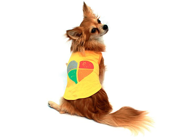 Майка для собак Каскад Сердце, унисекс, цвет: желтый. Размер M52000664Майка для собак Каскад выполнена из трикотажа. Майка без рукавов не ограничивает свободу движений, поэтому собачка будет чувствовать себя в ней комфортно. Спинка дополнена ярким изображением сердца. Модная и невероятно удобная трикотажная майка защитит вашего питомца от пыли и насекомых на улице, согреет дома или на даче. Длина по спинке: 25 см. Одежда для собак: нужна ли она и как её выбрать. Статья OZON Гид