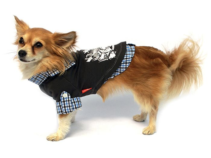 Рубашка для собак Каскад, унисекс, цвет: серый. Размер M52000692Рубашка для собак Каскад выполнена из трикотажа. Изделие не ограничивает свободу движений, поэтому собачка будет чувствовать себя в нем комфортно. Воротник, манжеты рукавов и низ изделия дополнены принтом в клетку, спинка украшена оригинальным рисунком. Модная и удобная рубашка согреет вашего питомца во время прогулок в прохладную погоду и защитит от пыли и насекомых. Длина по спинке: 25 см. Одежда для собак: нужна ли она и как её выбрать. Статья OZON Гид