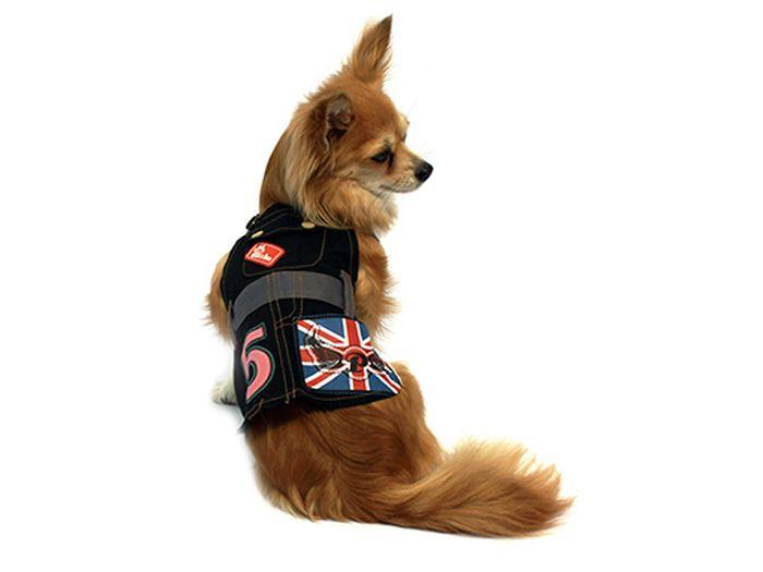 Сарафан для собак Каскад 5, цвет: черный, красный. Размер S52000700Стильный джинсовый сарафан для собак Каскад отлично подойдет для прогулок или для дома. Изделие не имеет рукавов, поэтому не ограничивает свободу движений, и собачка будет чувствовать себя в нем комфортно. Спинка модели дополнена изображением британского флага. Модный и удобный сарафан согреет вашего питомца во время прогулок и защитит от пыли и насекомых.Длина по спинке: 20 см.
