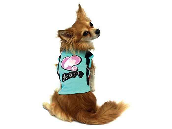 Футболка для собак Каскад Heart, унисекс, цвет: голубой. Размер S52000709Футболка для собак Каскад выполнена из трикотажа. Футболка не ограничивает свободу движений, поэтому собачка будет чувствовать себя в ней комфортно. Спинка украшена узором и дополнена джинсовыми ремешками. Модная и удобная трикотажная футболка защитит вашего питомца от пыли и насекомых на улице, согреет дома или на даче. Длина по спинке: 20 см. Одежда для собак: нужна ли она и как её выбрать. Статья OZON Гид