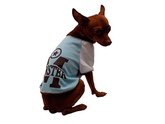 Футболка для собак Каскад Monster, унисекс, цвет: голубой. Размер M52000928Футболка для собак Каскад выполнена из трикотажа. Футболка не ограничивает свободу движений, поэтому собачка будет чувствовать себя в ней комфортно. Спинка модели дополнена принтом. Модная и удобная трикотажная футболка защитит вашего питомца от пыли и насекомых на улице, согреет дома или на даче. Длина по спинке: 25 см. Одежда для собак: нужна ли она и как её выбрать. Статья OZON Гид