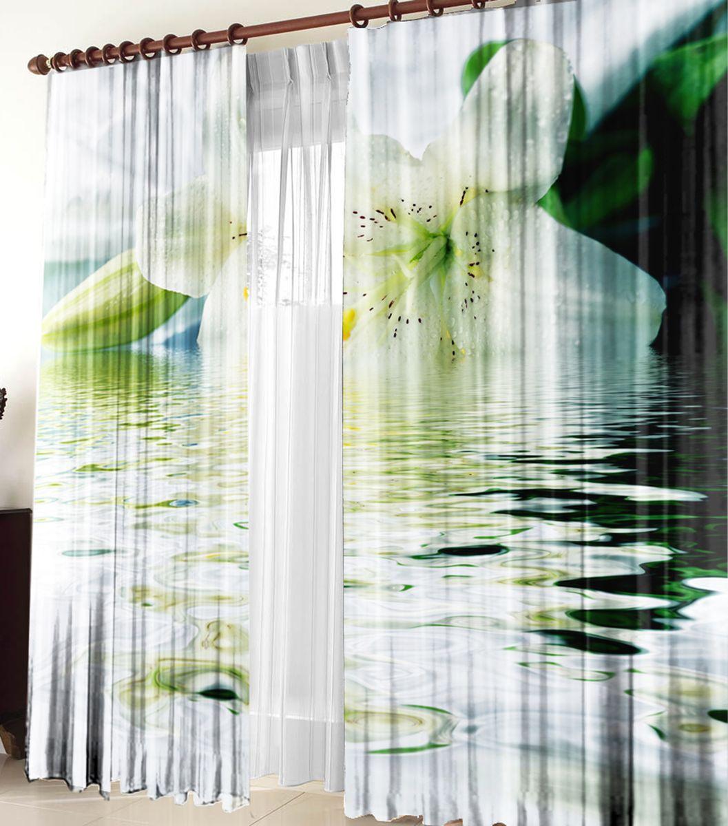 Комплект фотоштор Zlata Korunka Блюз, на ленте, высота 270 см. 2115321153Фотошторы Blackout - это особый вид светонепроницаемой ткани, не выцветает, прекрасно драпируется и при этом очень хорошо сохраняет форму, отличается высокой плотностью полотна и хорошей износостойкостью, обладает высокими тепло- и звукоизоляционными свойствами.Рекомендации по уходу: бережная стирка при 30°С, деликатный отжим, отбеливание запрещено, ткань blackout не требует глажки.Светопоглощение: 100%.Оттенок изделия может отличаться от представленногона сайте в силу особенностей цветопередачи фототехники и вашего монитора.