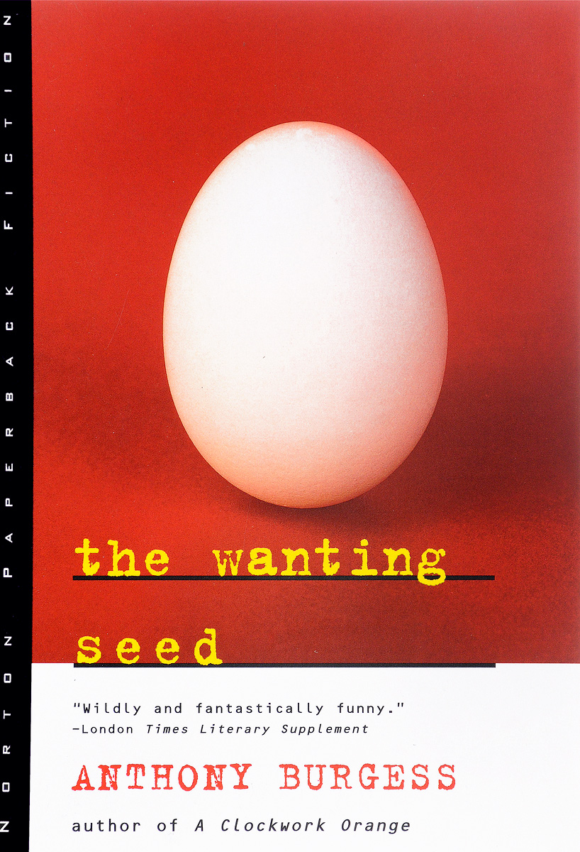 The Wanting Seed the comedy of errors