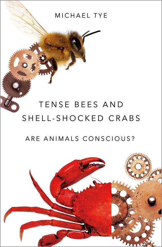 Tense Bees and Shell-Shocked Crabs what the most successful people do before breakfast
