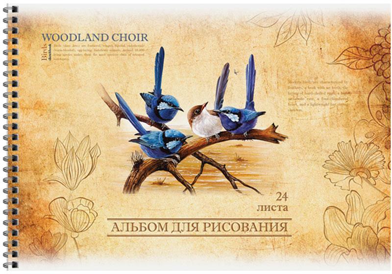 ArtSpace Альбом для рисования Винтаж Птицы 24 листовА24спВЛ_9157Альбом для рисования ArtSpace Винтаж. Птицы будет вдохновлять ребенка на творческий процесс.Альбом изготовлен из белоснежной бумаги с яркой обложкой из плотного картона, оформленной изображением птиц. Внутренний блок альбома состоит из 24 листов бумаги. Способ крепления - гребень.Высокое качество бумаги позволяет рисовать в альбоме карандашами, фломастерами, акварельными и гуашевыми красками.Во время рисования совершенствуются ассоциативное, аналитическое и творческое мышления. Занимаясь изобразительным творчеством, малыш тренирует мелкую моторику рук, становится более усидчивым и спокойным.