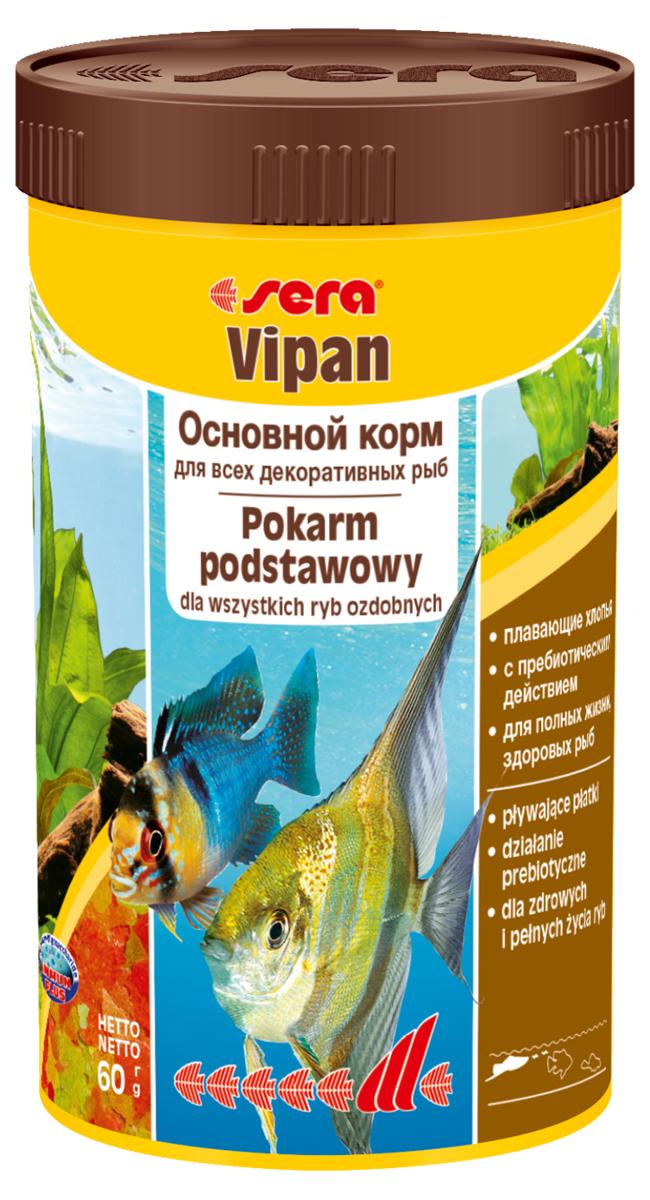 Корм для рыб Sera Vipan, 250 мл (60 г)0150Корм для рыб Sera Vipan - хорошо сбалансированный основной корм в виде хлопьев, содержащий более 40 ингредиентов. Идеально подходит для ежедневного кормления всех декоративных рыб в общих аквариумах. Сбалансированный состав удовлетворяет потребности множества видов. Бережная обработка гарантирует сохранение ценных ингредиентов (например, жирных кислот Омега, витаминов и минералов). Белки и другие питательные вещества делают этот корм высокопитательным и легко перевариваемым рыбами. Формула Vital-Immun-Protect гарантирует вашим рыбам прекрасное здоровье, укрепление иммунитета и обилие жизненных сил. Специальный метод приготовления позволяет хлопьям сохранять свою форму в течение длительного времени, не загрязняя воду. Хлопья в то же время очень нежны и поэтому охотно поедаются рыбой. Ингредиенты: рыбная мука, пшеничная мука, пивные дрожжи, казеинат кальция, гаммарус, яичный порошок, рыбий жир, маннанолигосахарид (MOS 0,4%), спирулина, травы, люцерна, крапива, мука из зеленых губчатых моллюсков, водоросли, зелень петрушки, перец, шпинат, чеснок, морковь, красители, разрешенные в ЕС. Аналитический состав: протеины 46,2%, жиры 8,9%, клетчатка 2,3%, зола 11,9%, влажность 6,7%. Витамины и провитамины на кг: витамин А 37000МЕ, витамин В1 35 мг, витамин В2 90 мг, витамин С 550 мг, витамин D3 1800МЕ, витамин Е 120 мг. Товар сертифицирован.