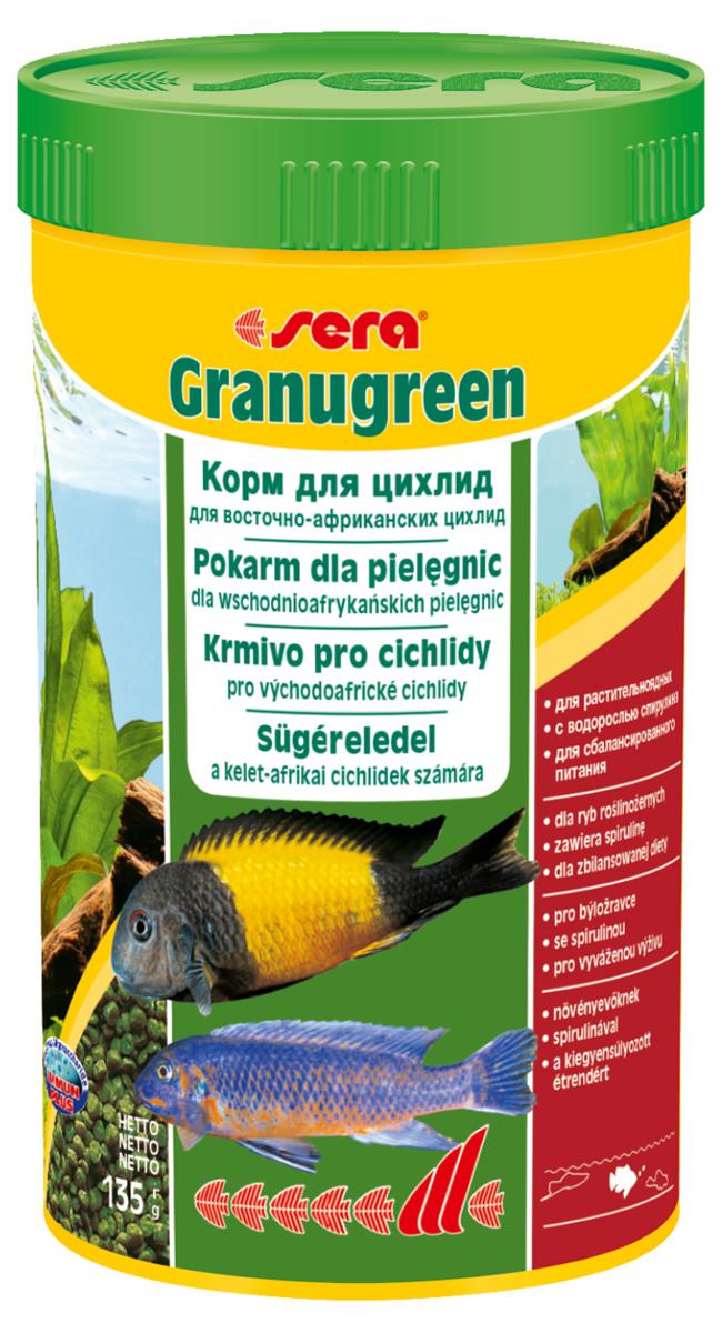 Корм для рыб Sera Granugreen, 250 мл (135 г)0392Корм для рыб Sera Granugreen - это основной комплексный корм в виде гранул, произведенных путем бережной обработки сырья. Предназначен для цихлид из африканских озер Малави и Танганьика, которые преимущественно питаются растениями и перифитоном. Сбалансированный состав растительных компонентов, таких как водоросль спирулина и шпинат, способствует здоровому пищеварению и оптимальному формированию яркости и насыщенности окраски цихлид. Медленно тонущие гранулы надолго сохраняют свою форму в воде, не загрязняя ее. Этот корм изготовлен в соответствии c формулой Vital-Immun-Protect, что гарантирует рыбам прекрасное здоровье, укрепление иммунитета и обилие жизненных сил. Инструкция по применению: кормить один-два раза в день, но только в том количестве, которое рыбы могут съесть в течение короткого периода времени. Ингредиенты: рыбная мука, кукурузный крахмал, пшеничная клейковина, пшеничная мука, пшеничные зародыши, пивные дрожжи, рыбий жир (49% Омега жирных кислот), петрушка, спирулина (1,7%), крапива, растительное сьрье, люцерна, маннанолигосахариды (0,4%), морские водоросли, паприка, шпинат, морковь, зеленые мидии, водоросль гематококкус, чеснок. Аналитический состав: протеин 38,9%, жиры 8,5%, клетчатка 4,8%, влажность 5,0%, зольные вещества 5,3%. Содержание добавок: витамин A 30.000 ID/kg, витамин D3 31.500 lU/kg, витамин E (D, L-o-tocopheryl acetate) 60 mg/kg, витамин B1 30 mg/kg, витамин B 90 mg/kg, витамин С (L-ascoibyl monophosphate) 550 mg/kg. Товар сертифицирован.