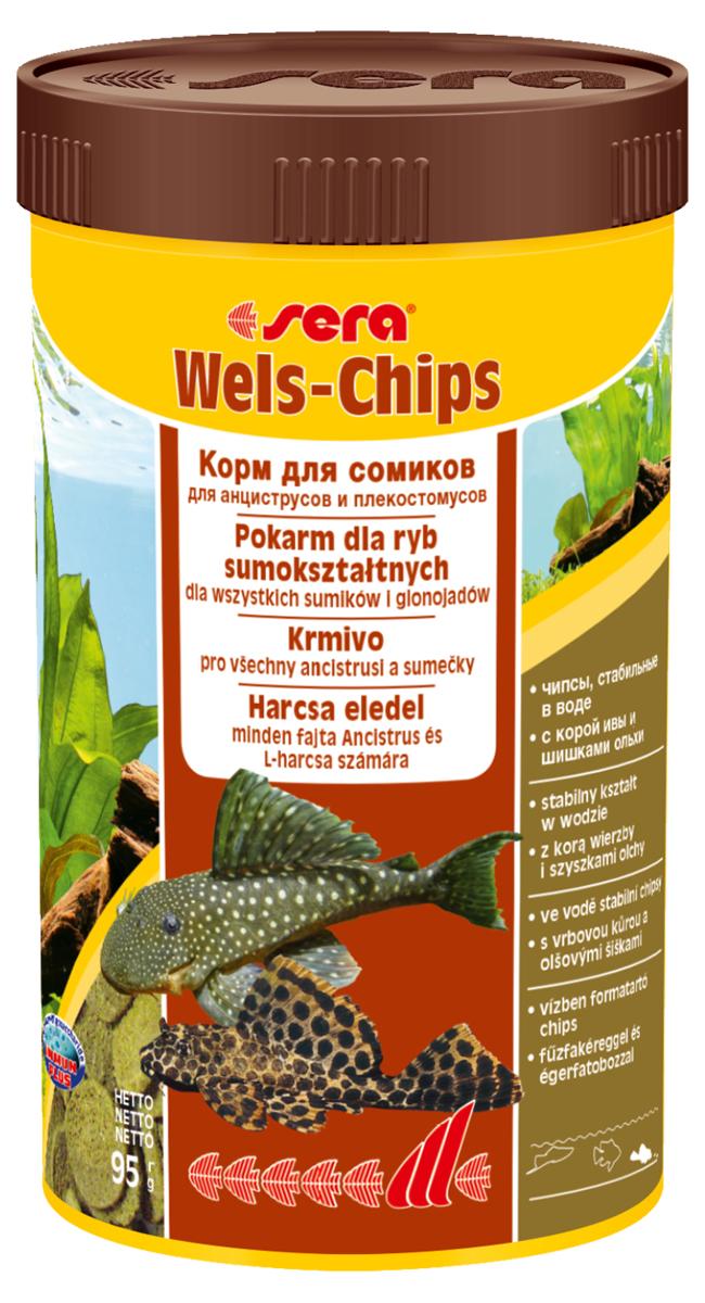 Корм для рыб Sera Wels Chips, 250 мл (95 г)0511Корм для рыб Sera Wels Chips - специализированный корм в виде чипсов для сомиков, содержащий кору ивы и шишки ольхи. Предназначен как для сомов, соскабливающих корм роговым наростом, так и для сомов со ртом в виде присоски. Высокое содержание балластных веществ поддерживает пищеварение и соответствует естественным особенностям питания рыб. Быстро тонущие чипсы сохраняют свою форму в течение 24 часов, не загрязняя воду. Это позволяет ночным сомам поедать корм медленно. Инструкция по применению: Кормить экономно один раз в день. Ночных животных желательно кормить вечером. Ингредиенты: рыбная мука, кукурузный крахмал, пшеничная мука, пшеничные зародыши, пивные дрожжи, спирулина, сухое молоко, рыбий жир (49% Омега жирных кислот), растительное сырье, цельный яичный порошок, кора ивы (0,5%), ольховые шишки (0,5%), крапива, люцерна, маннанолигосахариды (0,4%), петрушка, морские водоросли, паприка, шпинат, морковь, зеленые мидии, водоросль гематококкус, чеснок. Аналитический состав: протеин 34,2%, жиры 6,9%, клетчатка 6,2%, влажность 4,2%, зольные вещества 6,5%.Витамины и провитамины: витамин A 30.000 МЕ/кг, витамин D3 1.500 МЕ/кг, витамин E (D, L-a-tocopheryl acetate) 60 мг/кг, витамин B1 30 мг/кг, витамин B2 90 мг/кг, витамин C (L-ascorbyl monophosphate) 550 мг/кг. Товар сертифицирован.