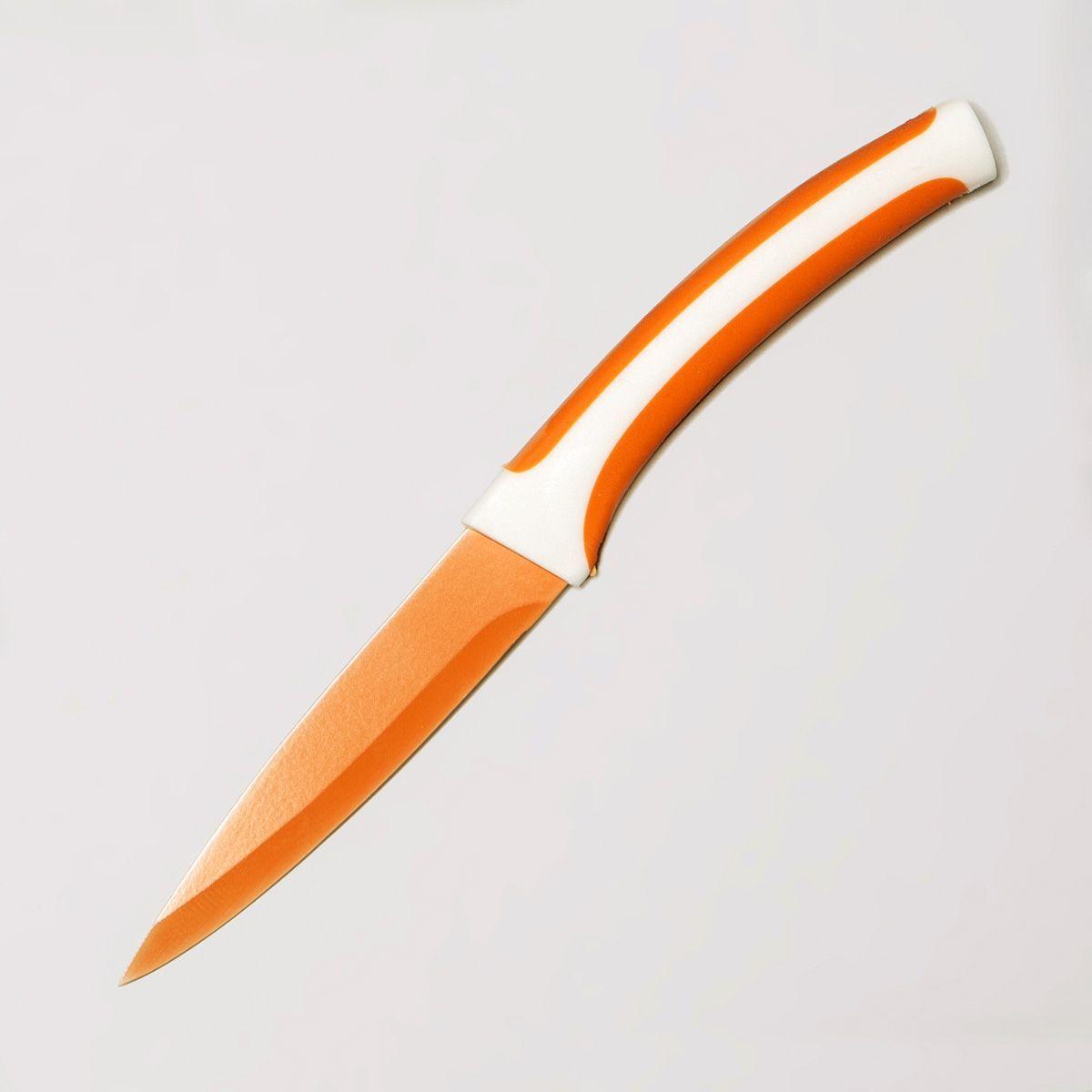 Нож десертный MoulinVilla Lilium, керамический, длина лезвия 10 смV5 60691 CFR 06Десертный нож MOULINvilla Lilium изготовлен из высококачественной циркониевой керамики - гигиеничного, экологически чистого материала. Нож имеет острое лезвие, не требующее дополнительной заточки. Эргономичная рукоятка, выполненная из высококачественного пищевого пластика, не скользит в руках и делает резку удобной и безопасной. Керамика - это отличная альтернатива металлу. В отличие от стальных ножей, керамические ножи не переносят ионы металла в пищу, не разрушаются от кислот овощей и фруктов и никогда не заржавеют. Этот нож будет служить вам многие годы при соблюдении простых правил эксплуатации и ухода.Нельзя мыть в посудомоечной машине.
