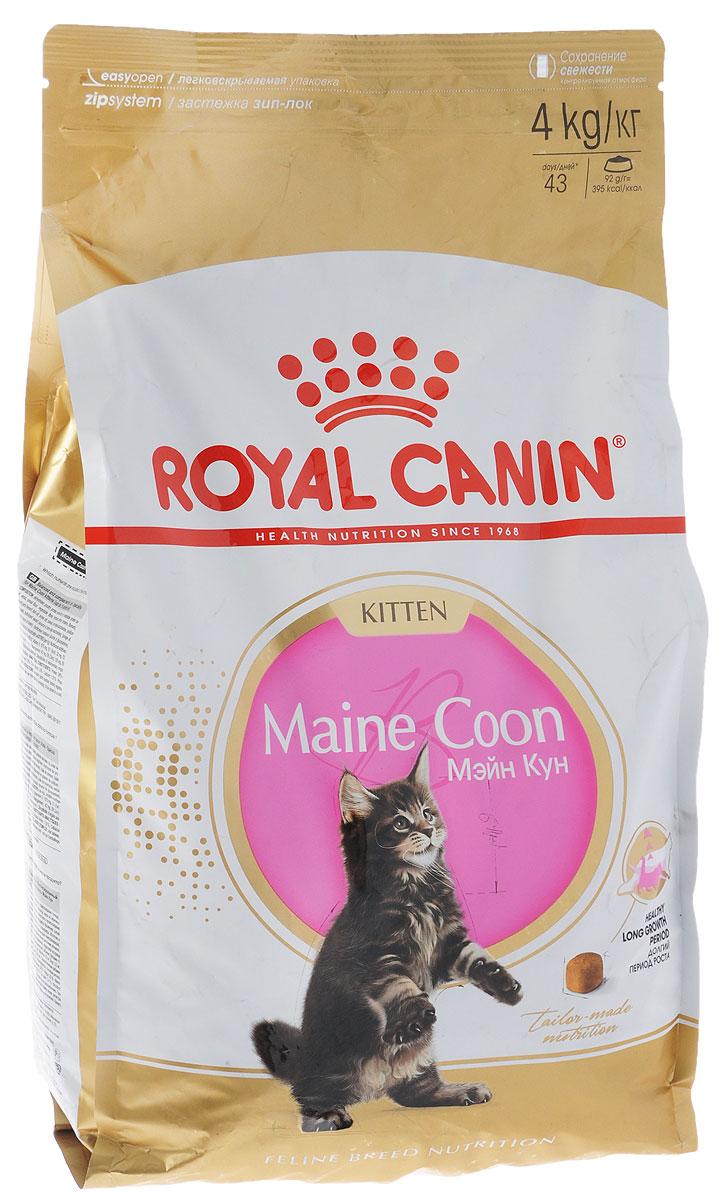 Корм сухой Royal Canin Maine Coon Kitten, для котят породы мейн-кун в возрасте от 3 до 15 месяцев, 4 кг