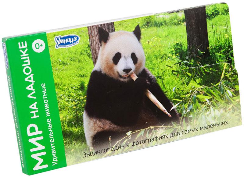 Умница Обучающие карточки Удивительные животные Панда умница обучающие карточки мир на ладошке выпуск 5