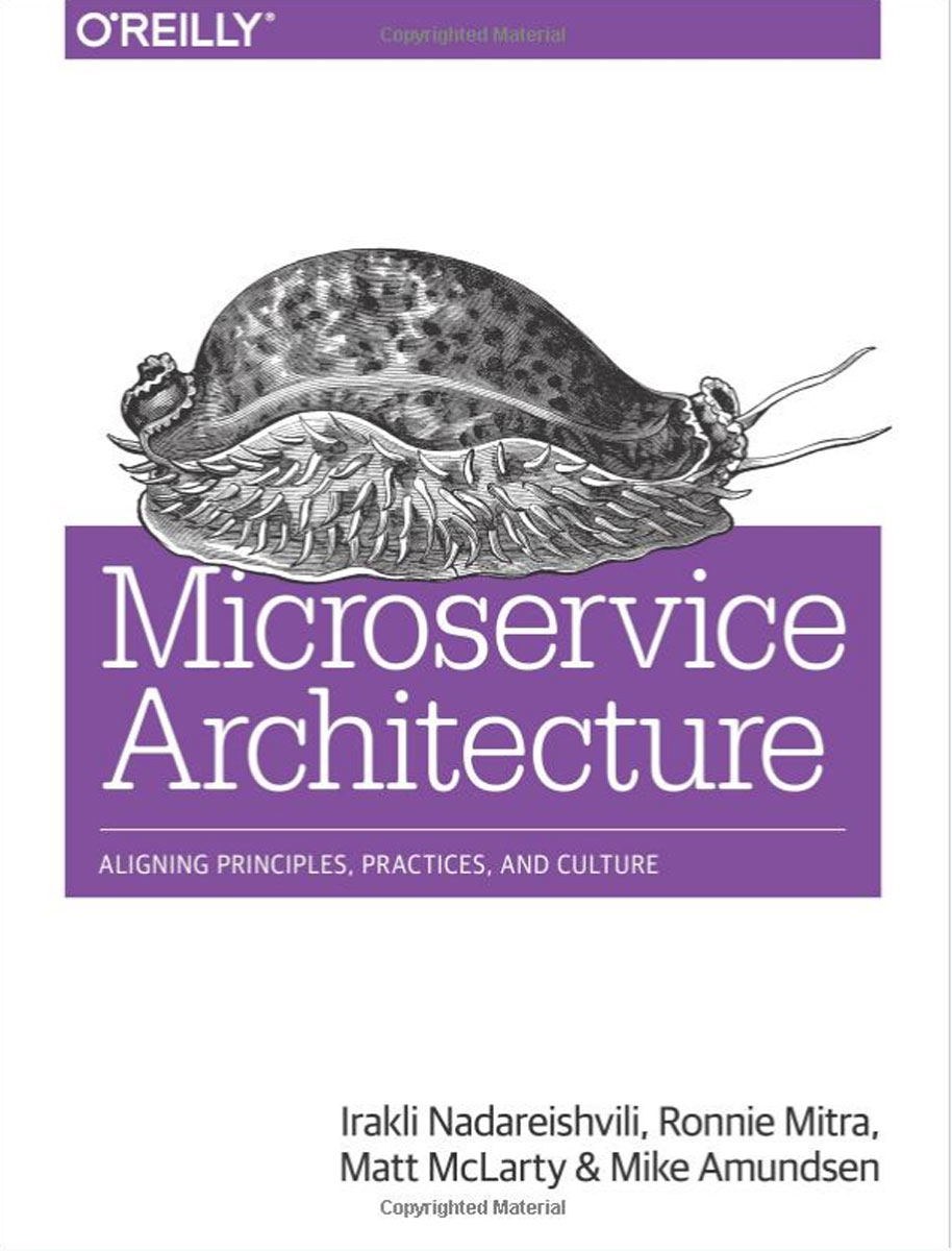 Microservice Architecture: Aligning Principles, Practices, and Culture scott millett patterns principles and practices of domain driven design