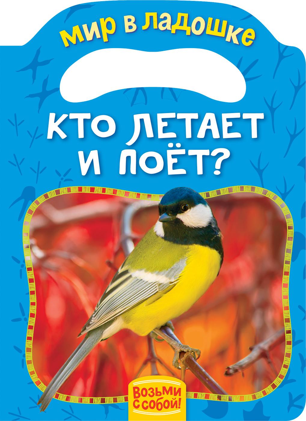 Кто летает и поет?