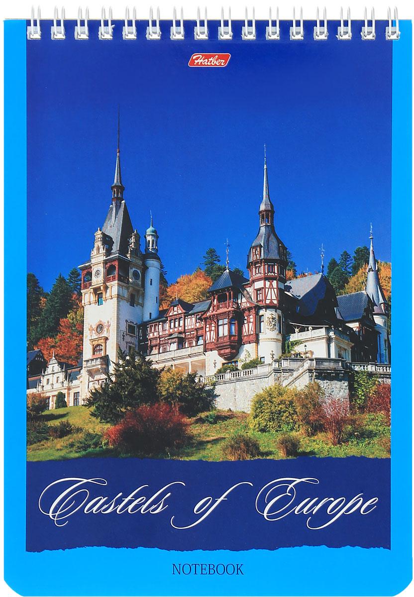 Hatber Блокнот Castles of Europe 60 листов в клетку 1421860Б5B1сп_14218Блокнот Hatber Castles of Europe - незаменимый атрибут современного человека, необходимый для рабочих и повседневных записей в офисе и дома.Фронтальная часть обложки выполнена из картона и оформлена изображением замка. Тыльная часть обложки выполнена из плотного картона, что позволяет делать записи на весу. Внутренний блок состоит из 60 листов белой бумаги. Стандартная линовка в голубую клетку без полей. Листы блокнота соединены металлическим гребнем.