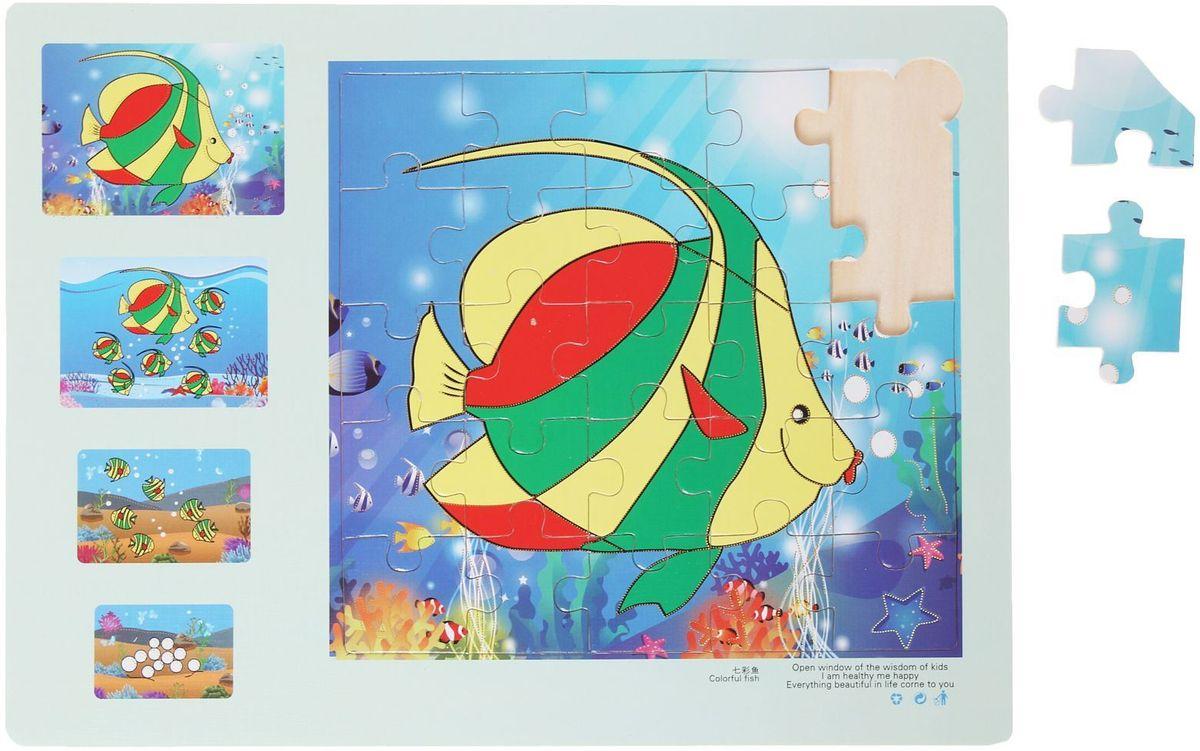 Лесная мастерская Пазл для малышей Эволюция Рыбка 2 август пазл для малышей рыбка цвет основы красный