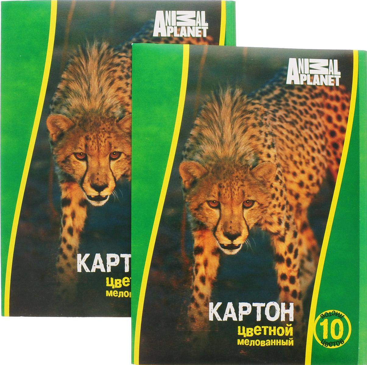 Action! Набор цветного мелованного картона Animal Planet 2 штAP-CC-10/10-2Набор цветного мелованного картона Action! Animal Planet позволит создавать всевозможные аппликации и поделки. Набор включает две упаковки одностороннего цветного картона, в каждой 10 листов формата А4 следующих цветов: желтого, зеленого, красного, оранжевого, белого, черного, коричневого, синего, золотистого и серебристого. Каждый из наборов упакован в картонную папку с изображением животного либо птицы.Создание поделок из цветного картона позволяет ребенку развивать творческие способности, кроме того, это увлекательный досуг.