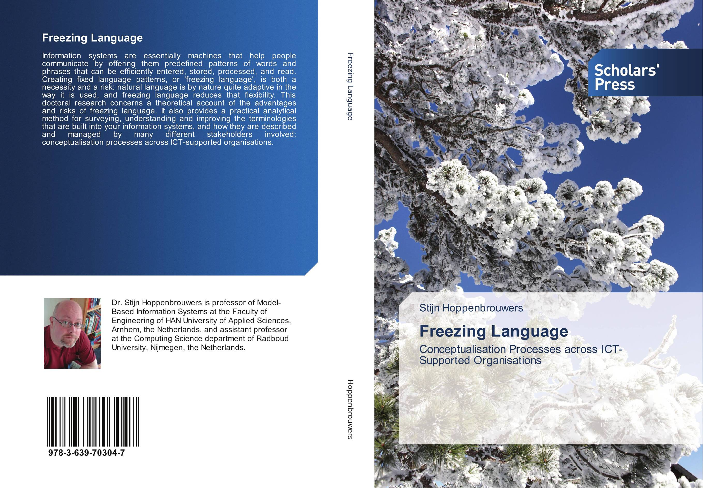 Freezing Language beyond the it productivity paradox john wiley series in information systems
