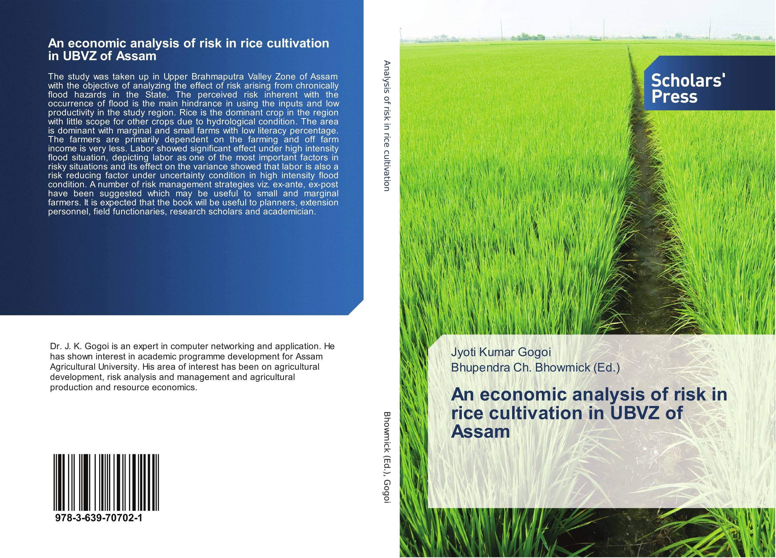 An economic analysis of risk in rice cultivation in UBVZ of Assam зажимы для бумаги 25 мм 12шт sponsor