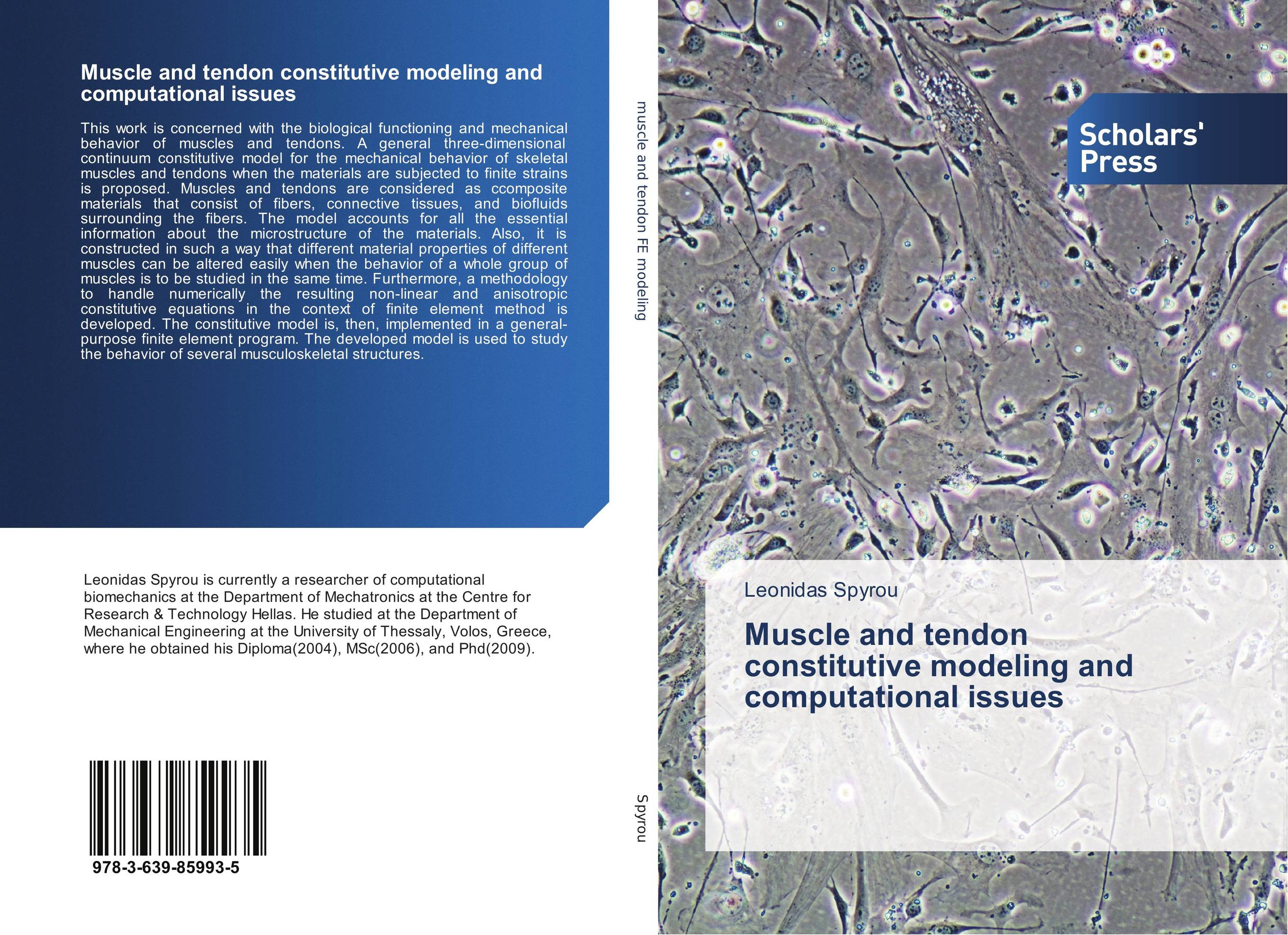 Muscle and tendon constitutive modeling and computational issues muscles of hand with main vessels and nerves model hand muscles model