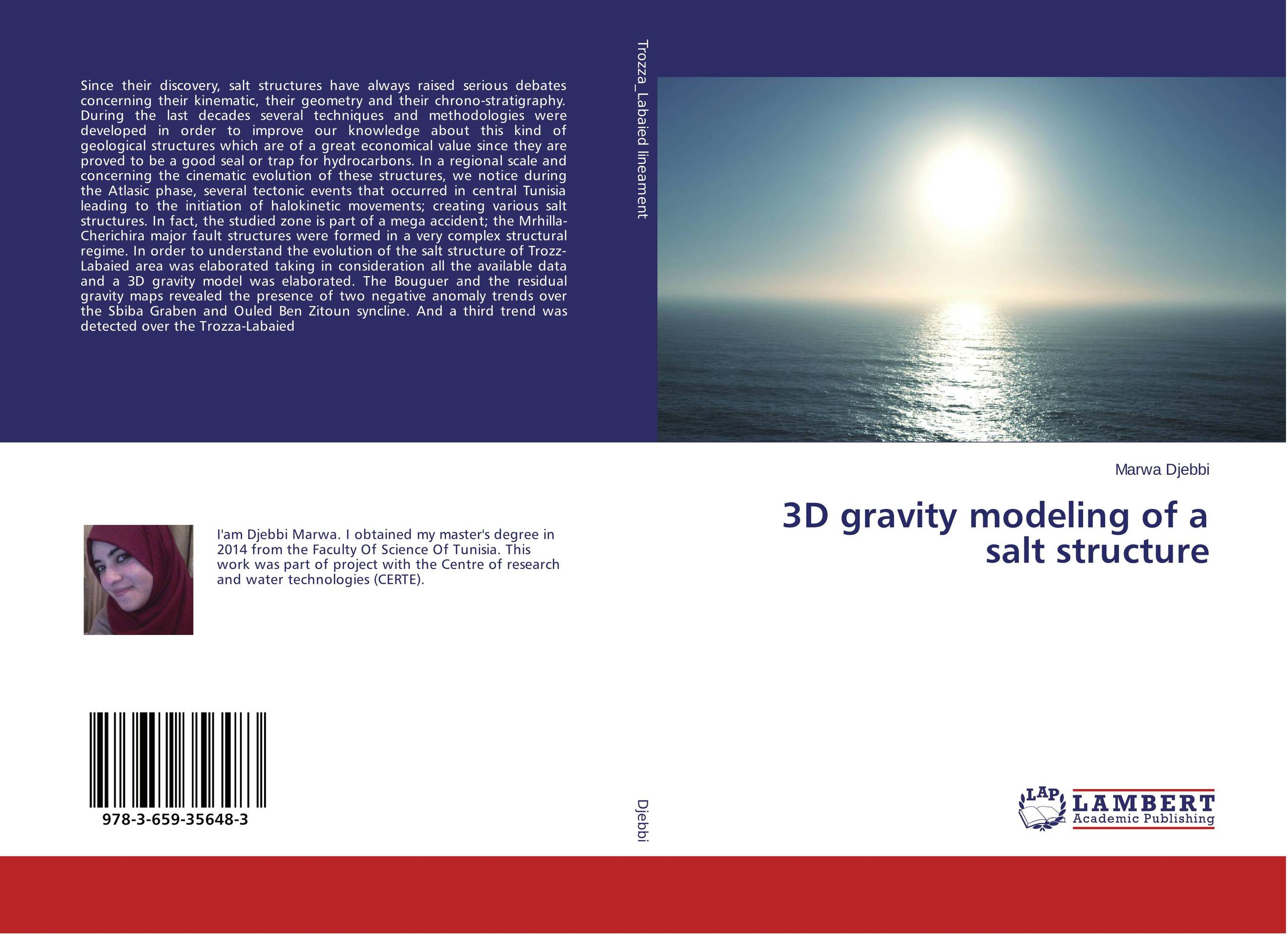 3D gravity modeling of a salt structure the modeling of a humane society