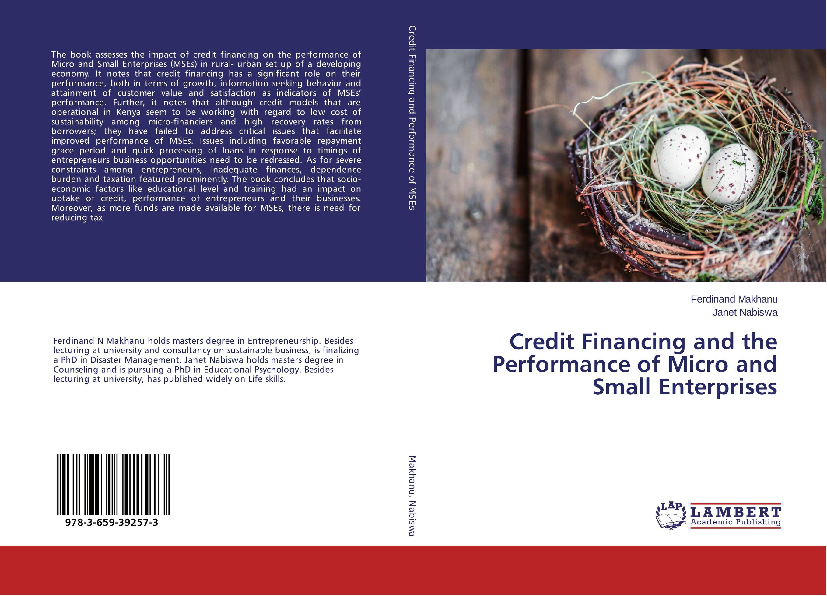 Credit Financing and the Performance of Micro and Small Enterprises