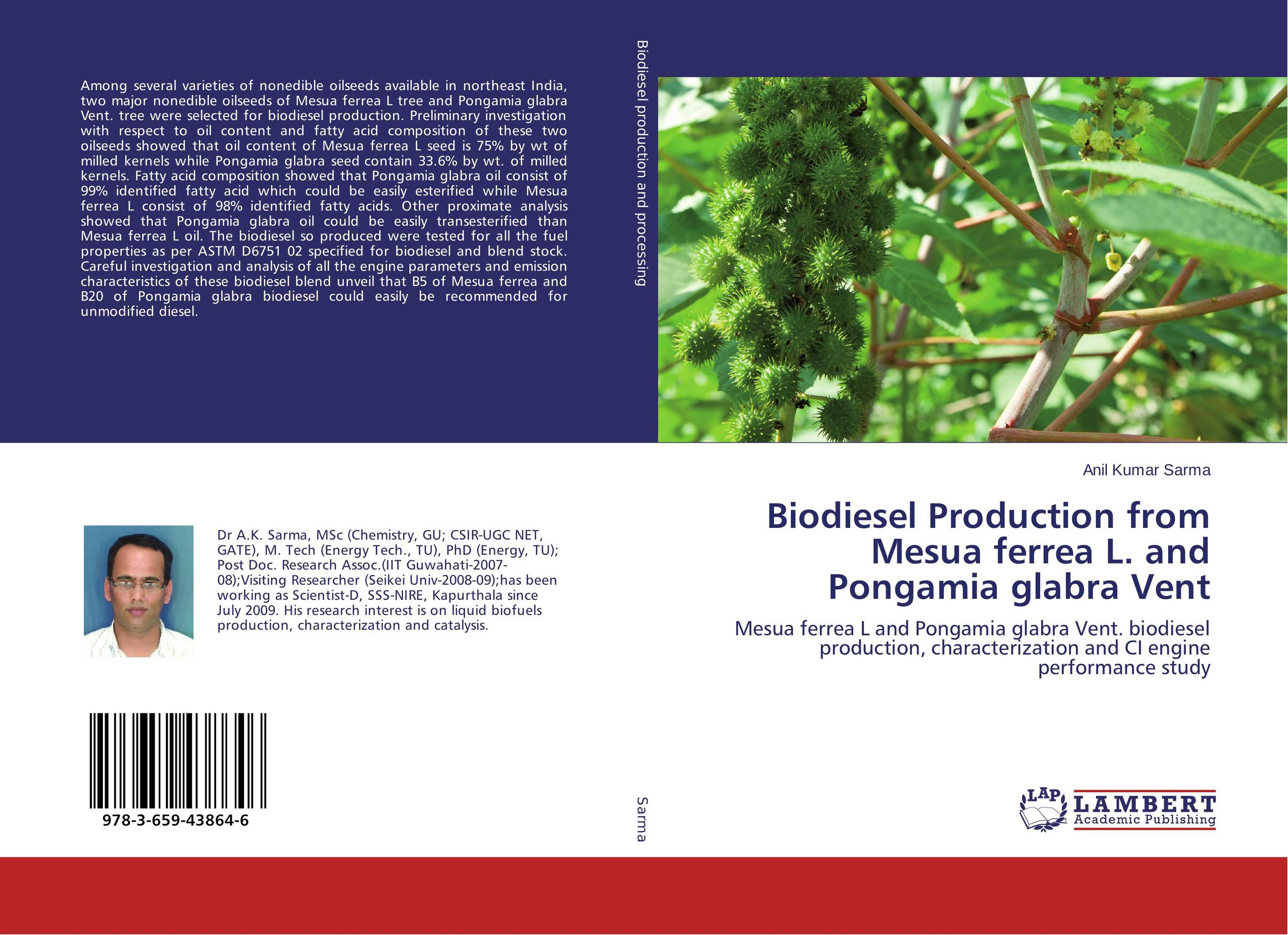 Biodiesel Production from Mesua ferrea L. and Pongamia glabra Vent parametric optimization of engine for pyrolysis oil and diesel blend