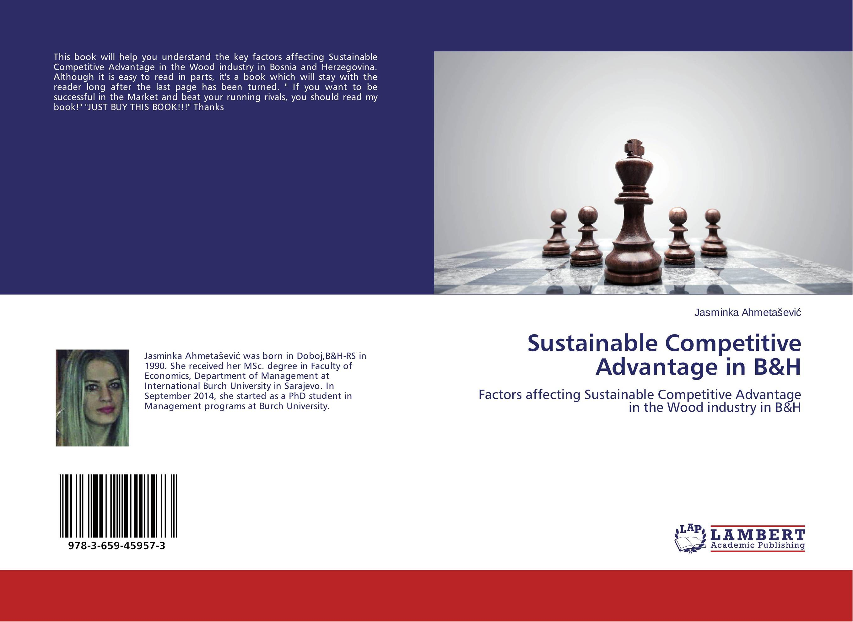 Sustainable Competitive Advantage in B&H business intelligence for competitive advantage in insurance industry