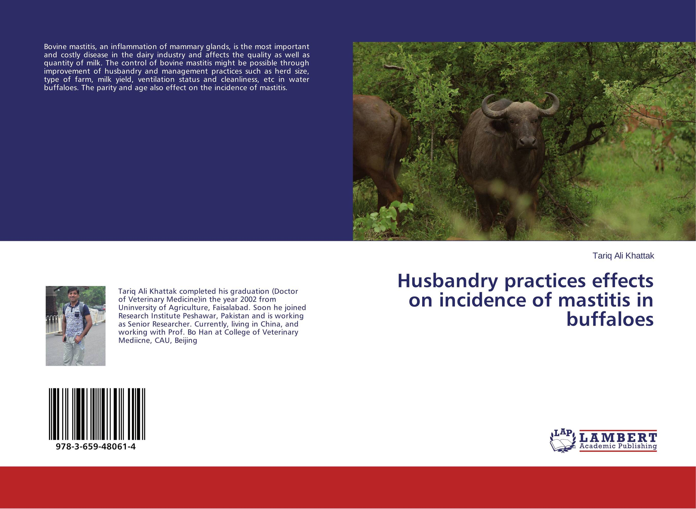 Husbandry practices effects on incidence of mastitis in buffaloes therapeutic efficiency of norgestomet and pmsg in anestrous buffaloes