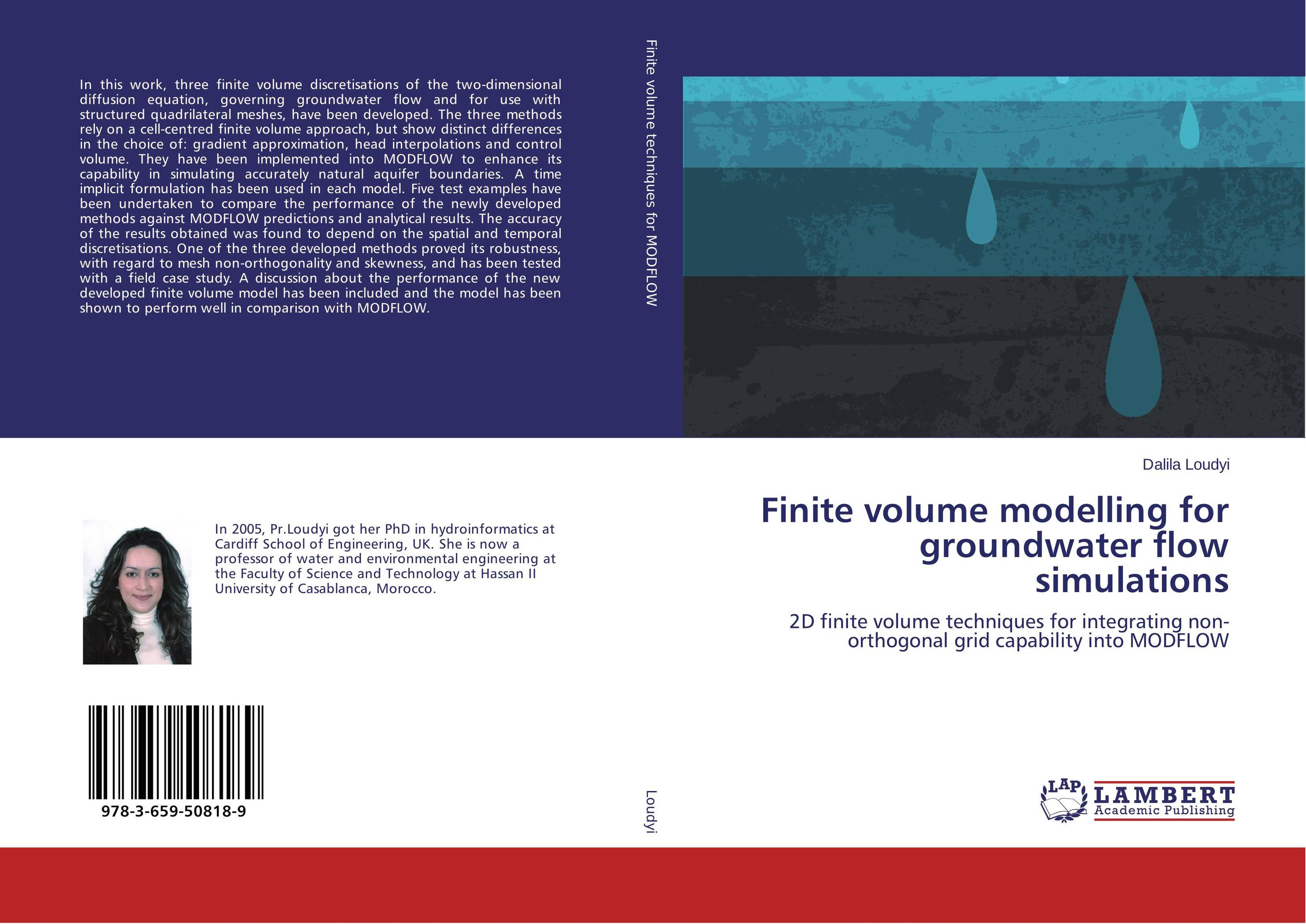Finite volume modelling for groundwater flow simulations goon show the volume 24 the case of the missing heir