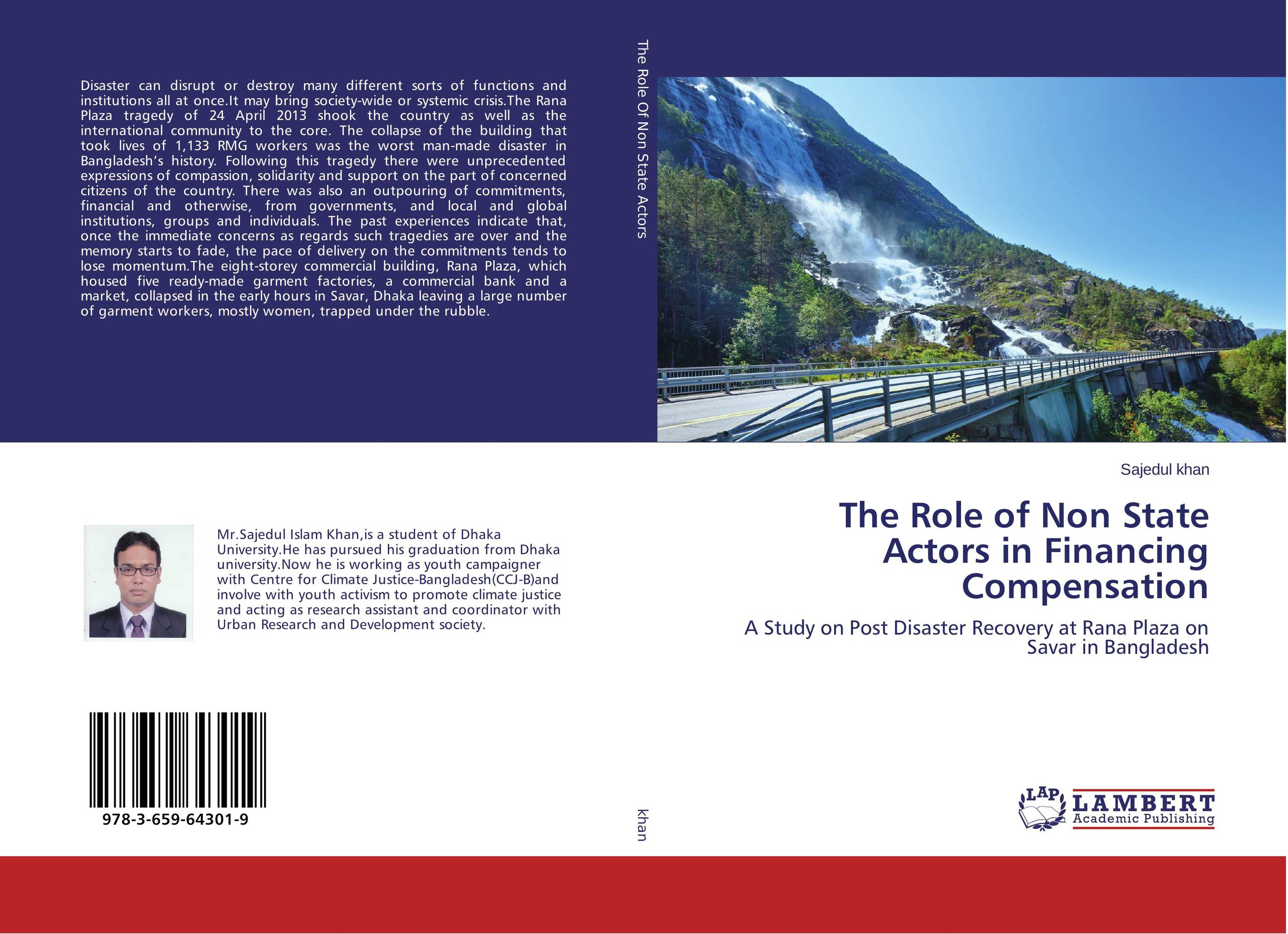 The Role of Non State Actors in Financing Compensation the commitments