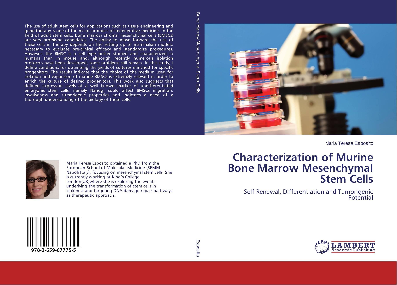 Characterization of Murine Bone Marrow Mesenchymal Stem Cells methionine supplementation alters beta amyloid levels in brain cells