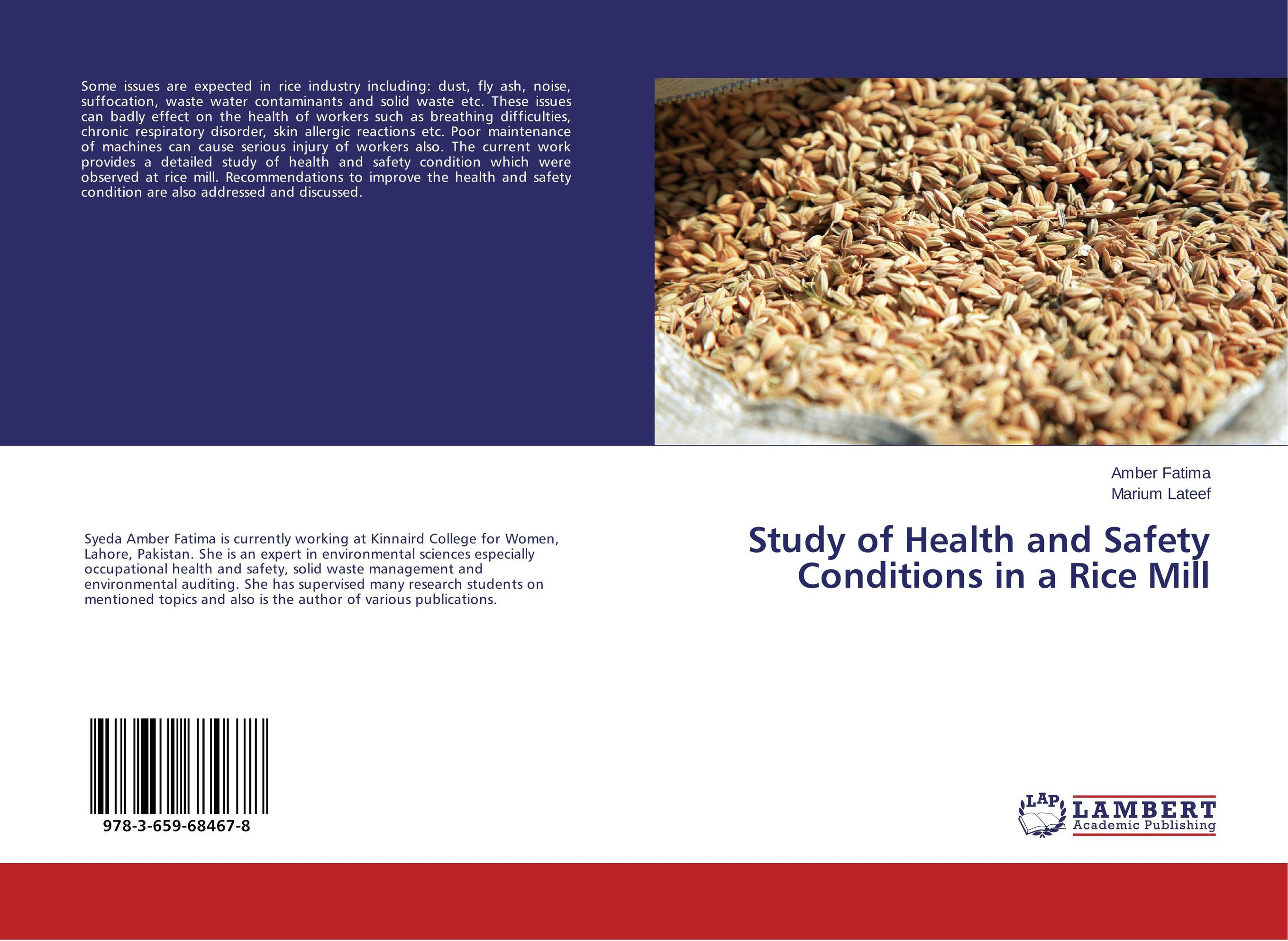 Study of Health and Safety Conditions in a Rice Mill
