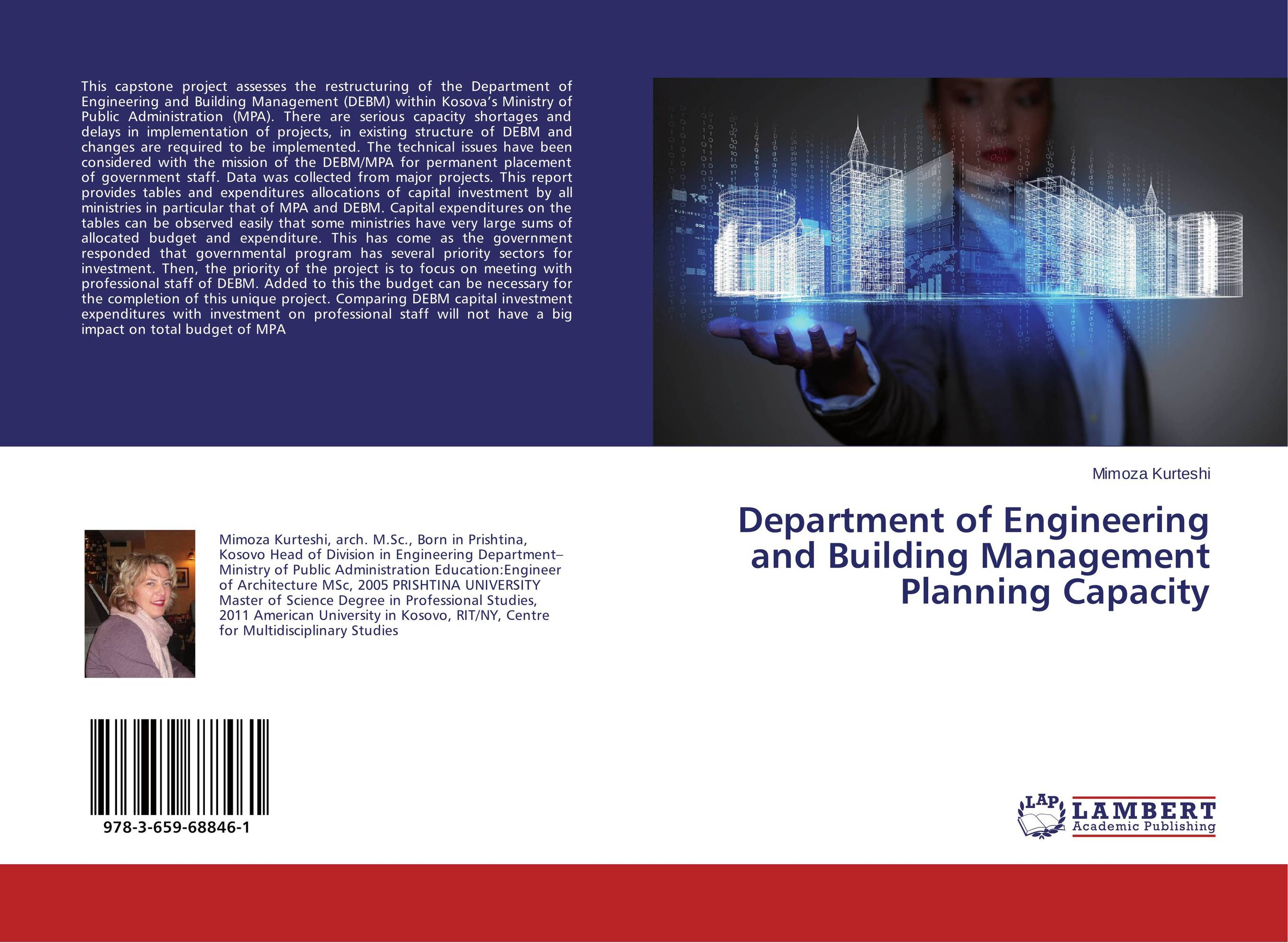 Department of Engineering and Building Management Planning Capacity the strategic management of large engineering projects – shaping institutions risks