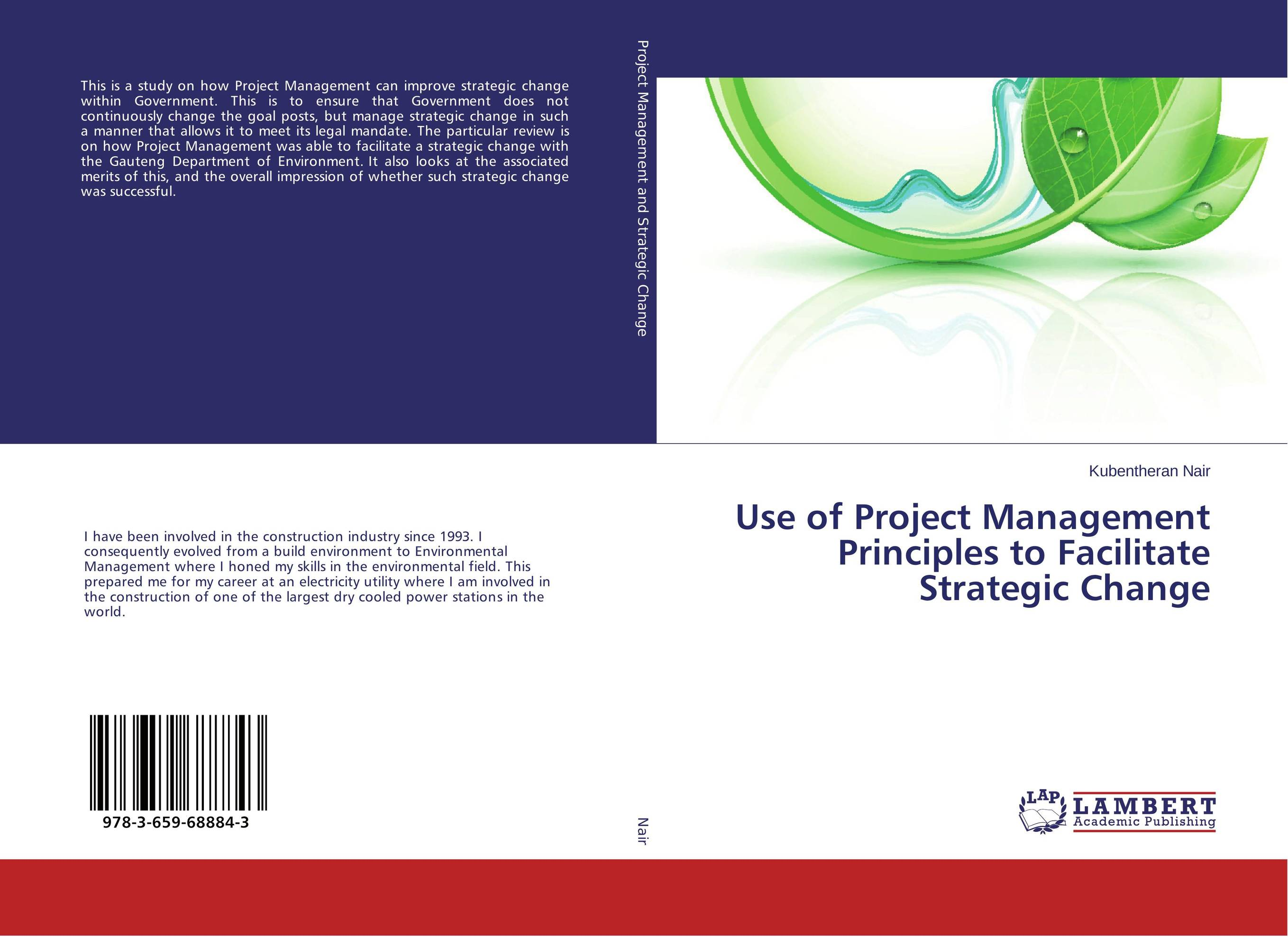 Use of Project Management Principles to Facilitate Strategic Change ard pieter man de alliances an executive guide to designing successful strategic partnerships