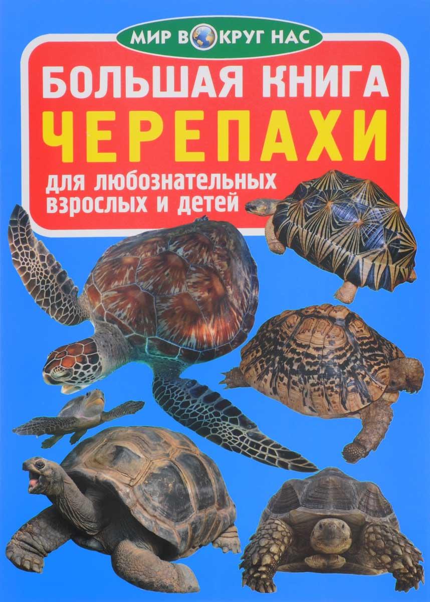 О. В. Завязкин Черепахи гонки на черепахах
