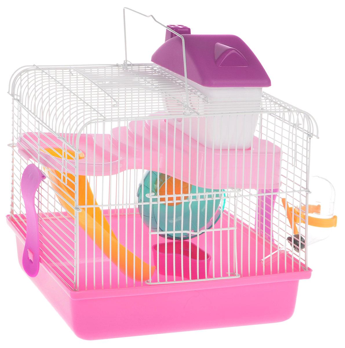 Клетка для грызунов Каскад, с оборудованием, 26 х 20 х 30 см55001609/розовыйКлетка Каскад, выполненная из пластика и окрашенного металла, прекрасно подходит для мелких грызунов. Изделие двухэтажное, оборудовано поилкой, сенником, пластиковым домиком и миской. Клетка имеет яркий поддон, удобна в использовании и легко чистится. Сверху имеется ручка для переноски, а сбоку удобная дверца.Такая клетка станет уединенным личным пространством и уютным домиком для маленького грызуна.