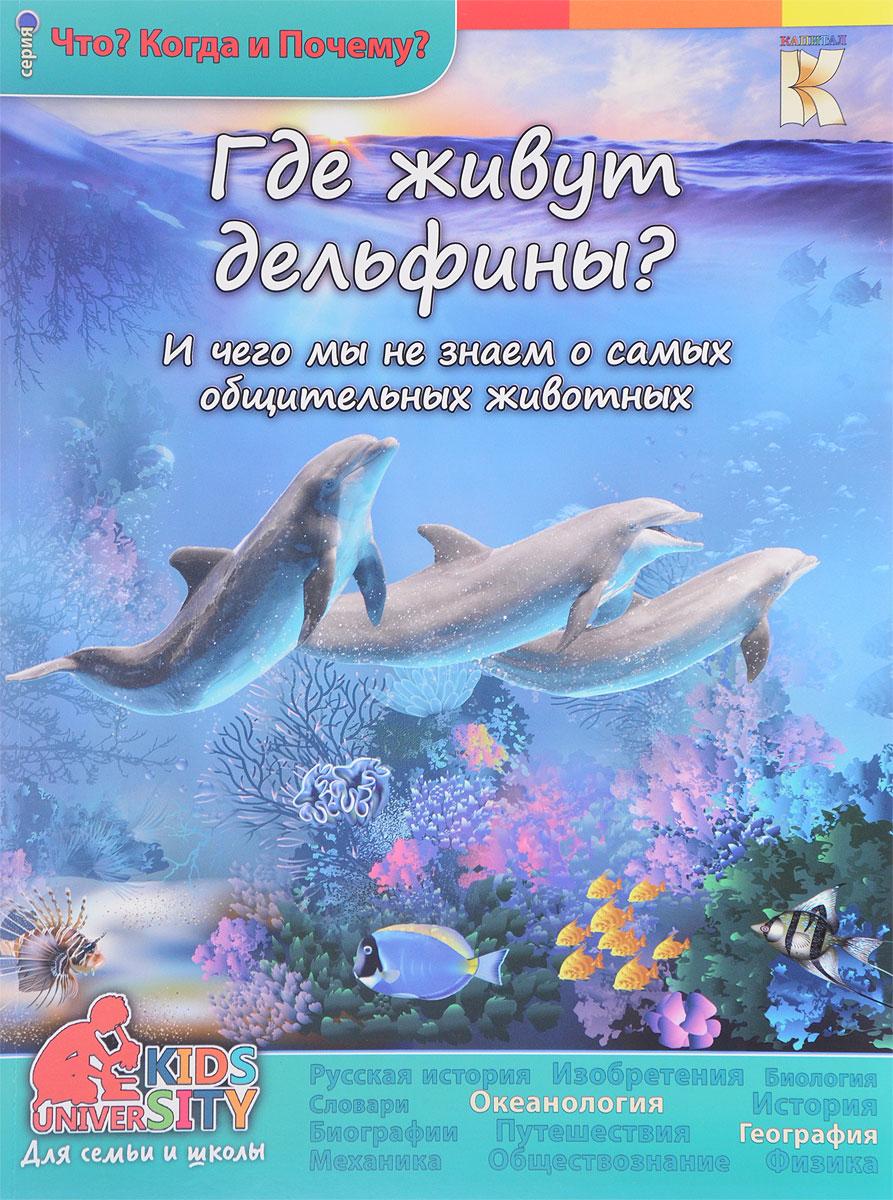 Где живут дельфины? И чего мы не знаем о самых общительных животных
