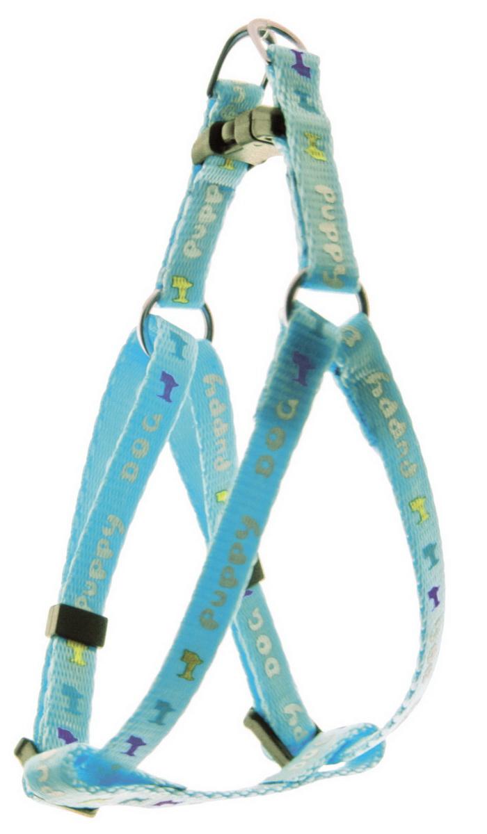 Шлейка для мини-собак Dezzie, цвет: голубой, ширина 0,8 см, обхват груди 22-29 см шлейка для собак dezzie цвет черный ширина 1 см обхват шеи 25 см обхват груди 28 33 см размер s 5624007